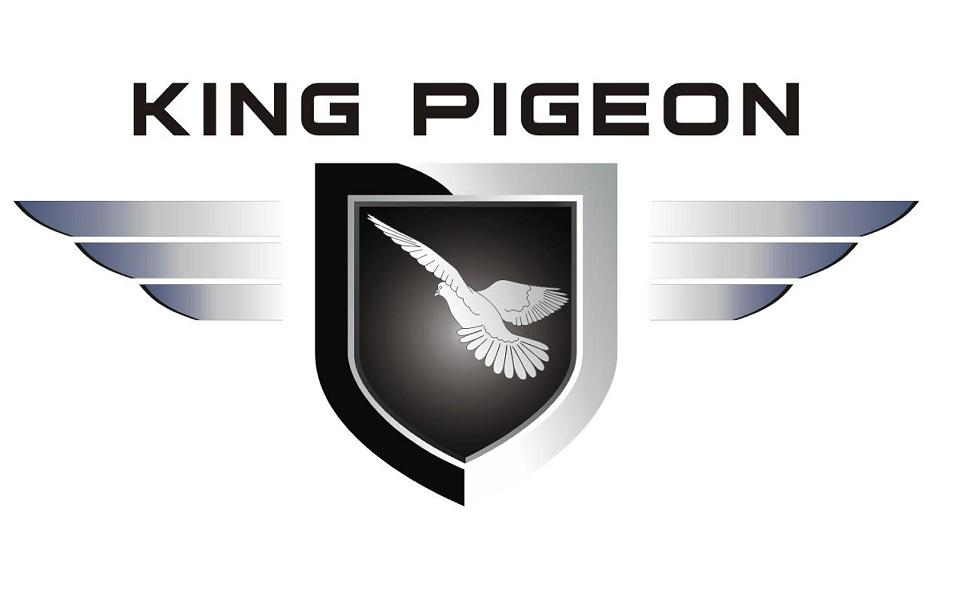 Company Name: King Pigeon Communication Co.,Ltd