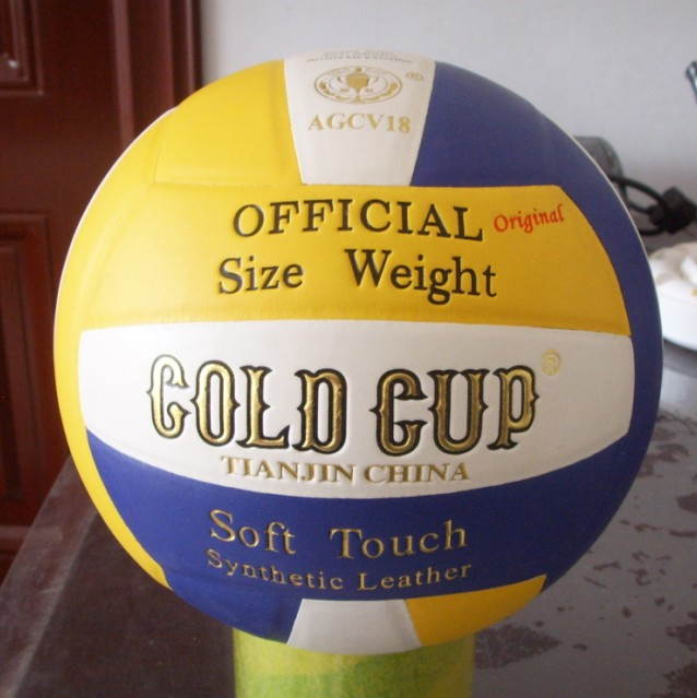 Gold Cup Volleyball-Original