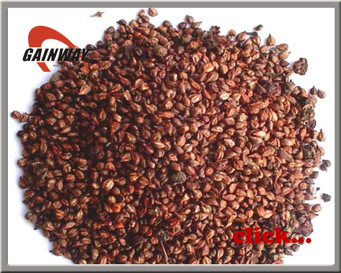 Grape Seed Extract Powder