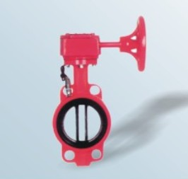 ignal butterfly valve
