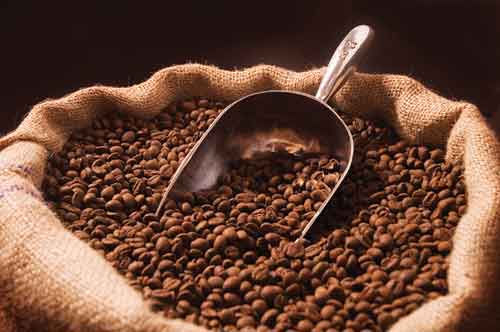 Sale of corporate rights Operating Coffee Factory