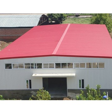 painting galvanized steel roof / prepainted galvanized roof panel