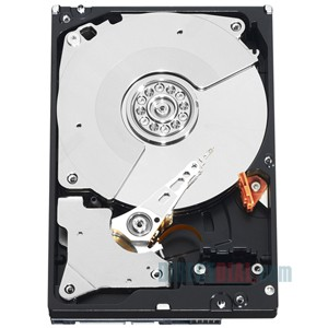 sell WD1003FBYX Server hard disk drive SATA 1TB
