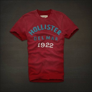 Wholesale and Retail 2013 New Arrival Abercrombie and fitch  tees