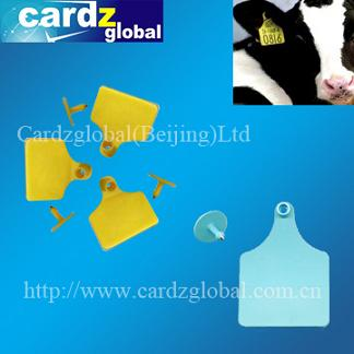 FIRD ear tag for cattle