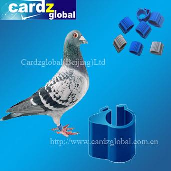 RFID animal tag for pigeon and chicken and duck