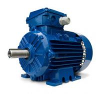 Elektrim Three-phase Industrial Motors