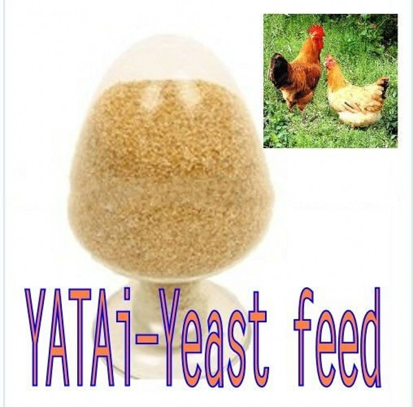 yeast feed-poultry feed