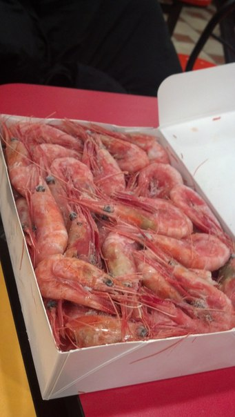 how to cook frozen cooked shrimp
