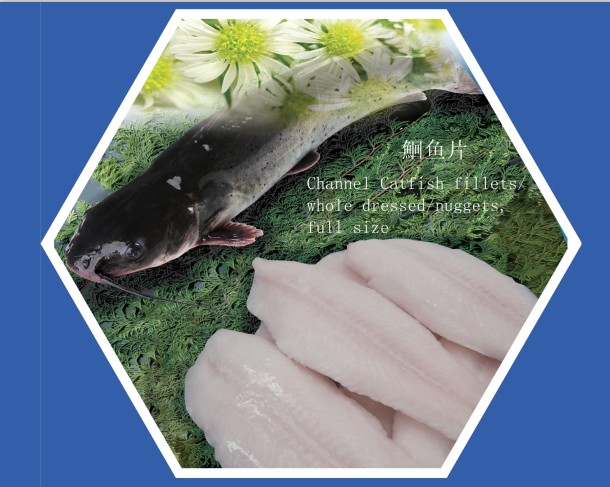 channel catfish fillets