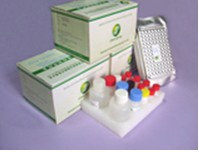 Nitrofuran (AOZ) ELISA Test Kit
