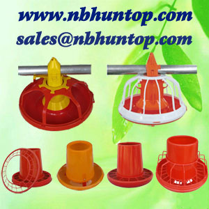 Broiler Layer Feeding System,broiler layer feeding equipment supplier China