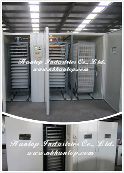 Poultry Egg Incubator, poultry hatching machine, chicken incubator producer China Huntop