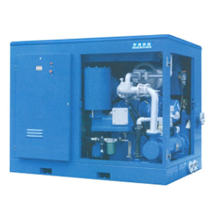 Oil-free screw compressor