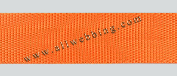 Polyester webbing for pet collars, pet leashes