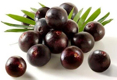 Acai berry Extract-Anthocyanin & Polyphenols