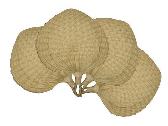 STRAW PALM LEAF HAND FAN