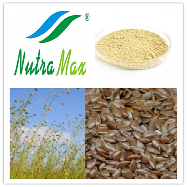 Flax Seed Extract 20%~80%(sales06@nutra-max.com)
