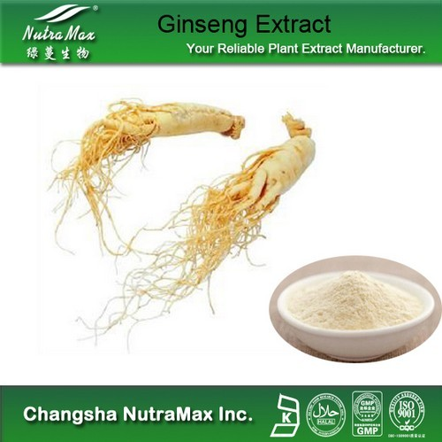 Ginseng Root Extract 80% Ginsenosides(sales06@nutra-max.com)