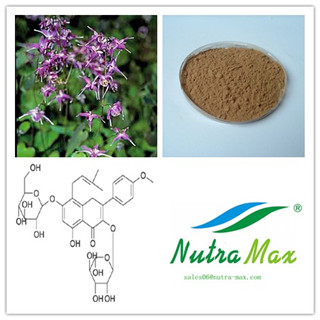 Horny Goat Weed Extract(sales06@nutra-max.com)