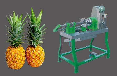 Pineapple Peeling and Coring Machine