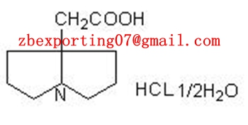Pyrrolizidine-7-acetic acid