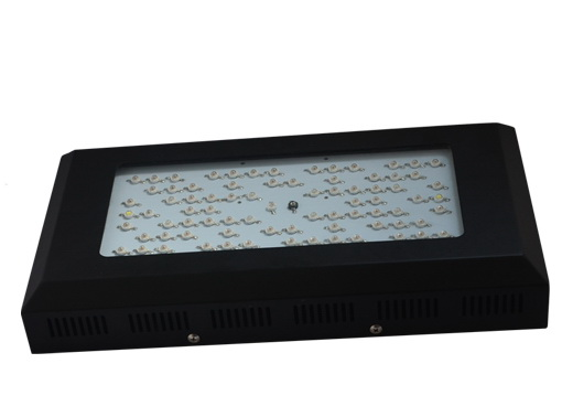 IP65, high efficiency, 240W,4200LM,120degree,80pcs LED, LED grow light fixture,100~240VAC