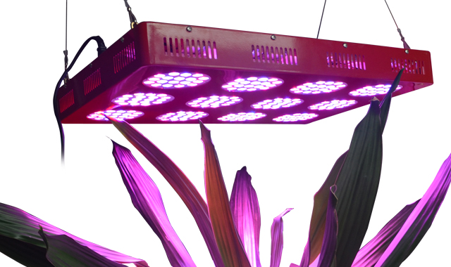 550mA, high efficiency, 600W,11350LM,90degree,216pcs LED, square LED grow light fixture