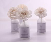 Luxury 100ml sola flower diffuser