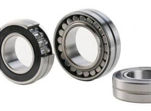 BS Double Seal Series Bearings