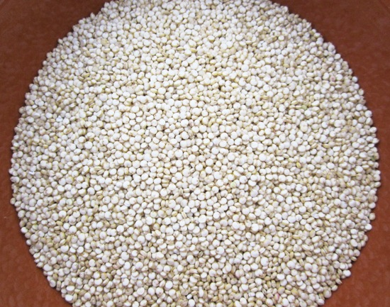 Red,white Quinoa Grain