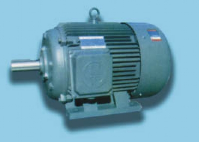 Y Series three-phase inase induction motors