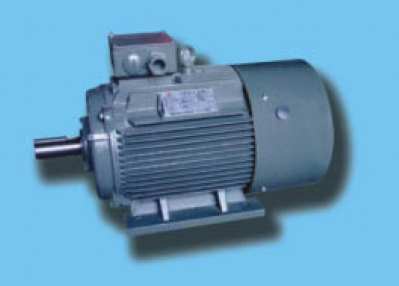 Sell 80-355 Compression special three-phase induction motor