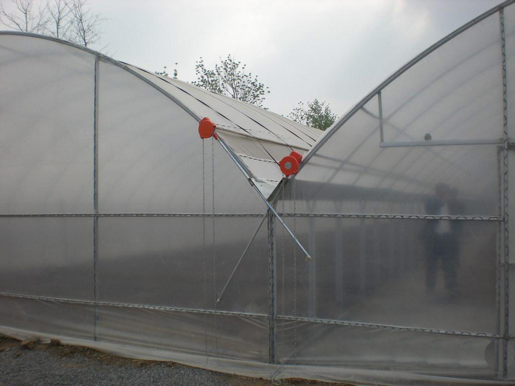 Arch Multi Span Greenhouse