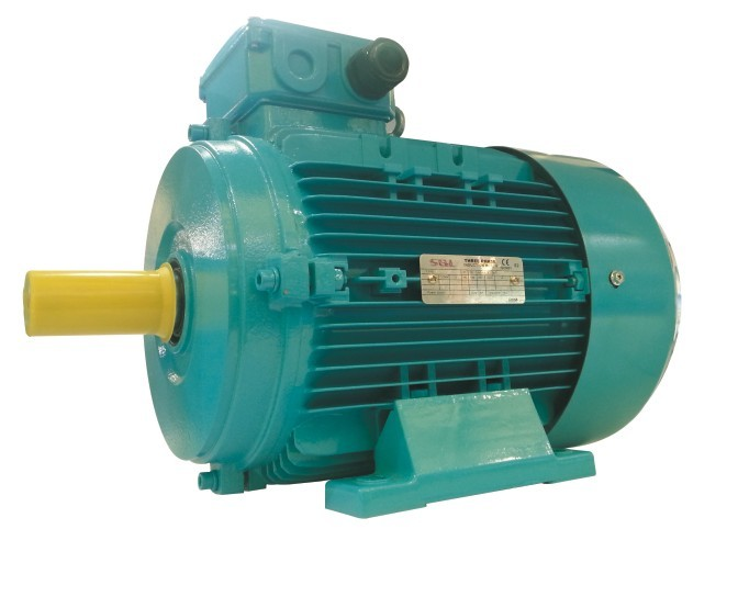 IE1 electric motor