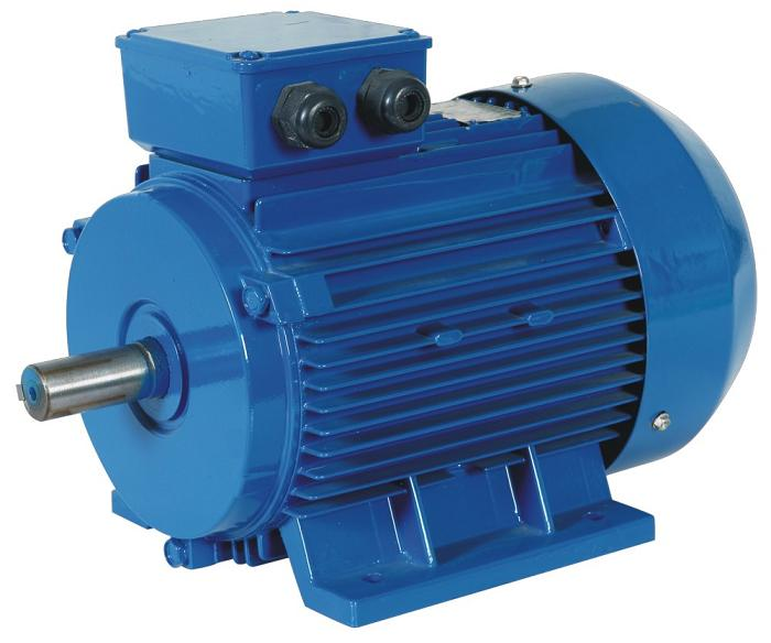 IE2 electric motor