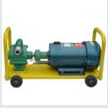KYB Self-Priming Vane Pump