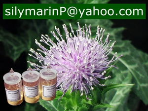 Water Soluble Silymarin