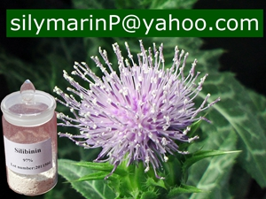 Milk Thistle Extract (Silybin)