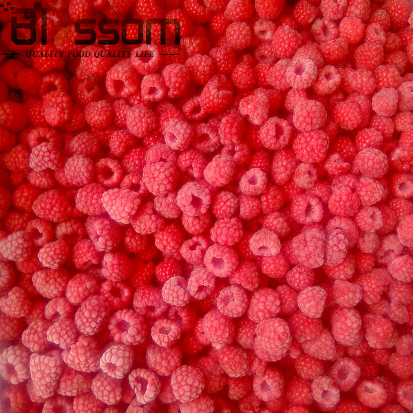 Hot Selling IQF Frozen Fruit Raspberry