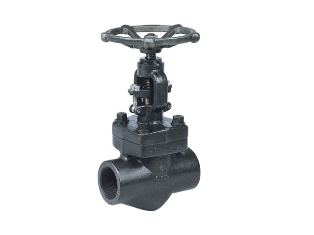 Forged Steel Gate Valve