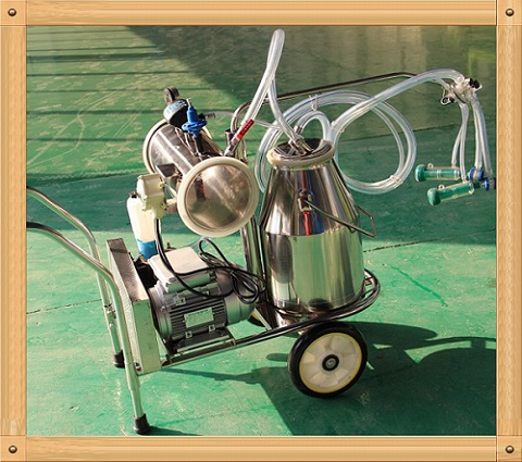 Vacuum pump milking machine for goat