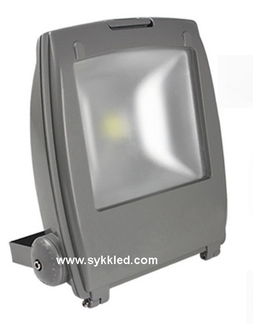 50W IP67 LED Flood Light