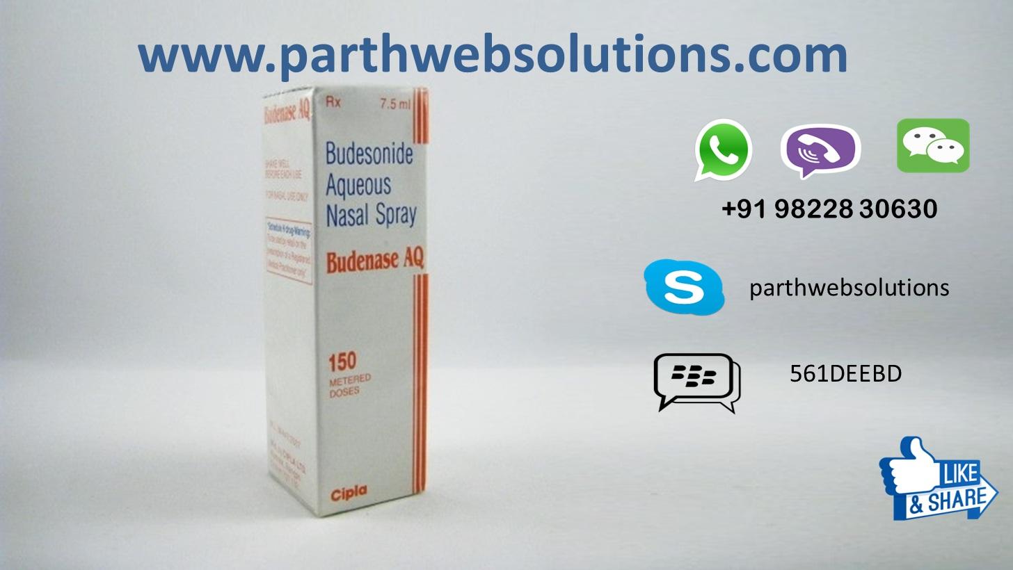 Budesonide Nasal Spray Ingredients