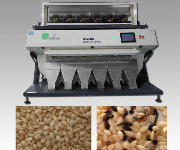 Sesame CCD Color Sorter Machine
