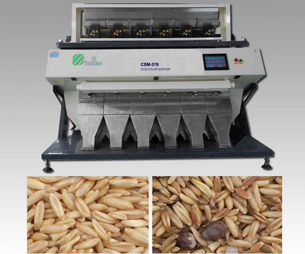 Wheat CCD Color Sorter Machine