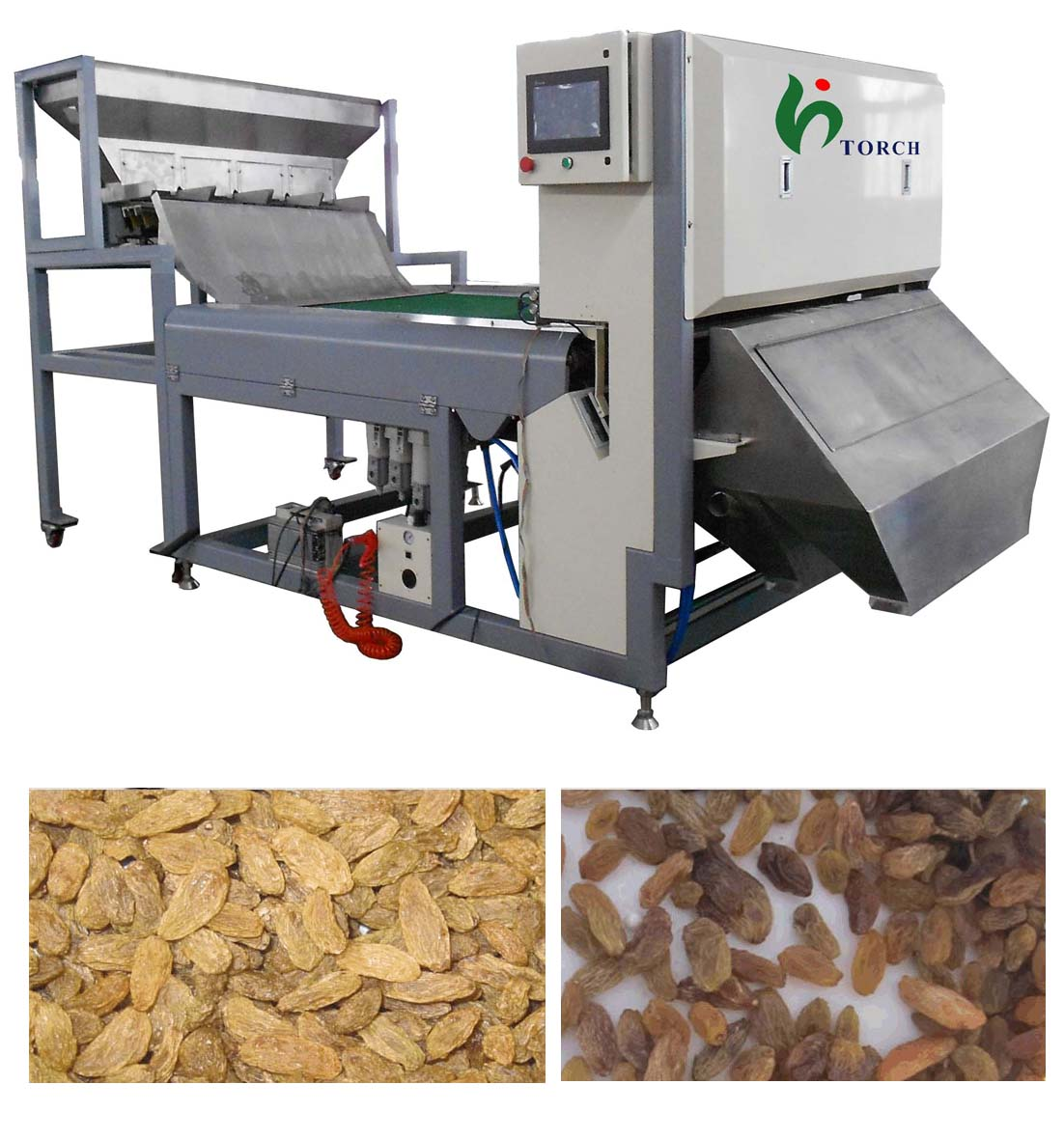 Raisin CCD Color Sorter Machine