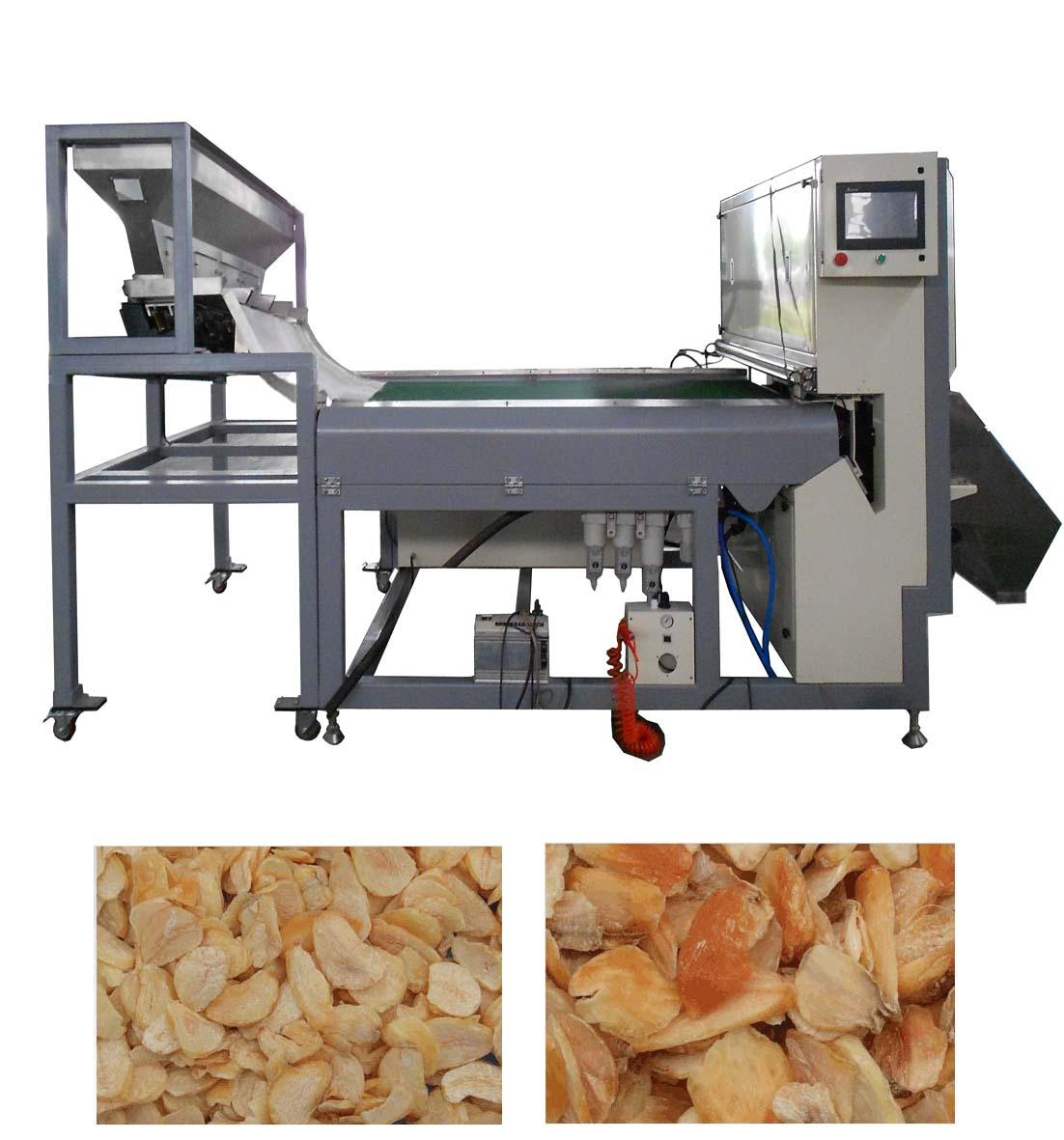 Dehydrated Vegetable CCD Color Sorter Machine