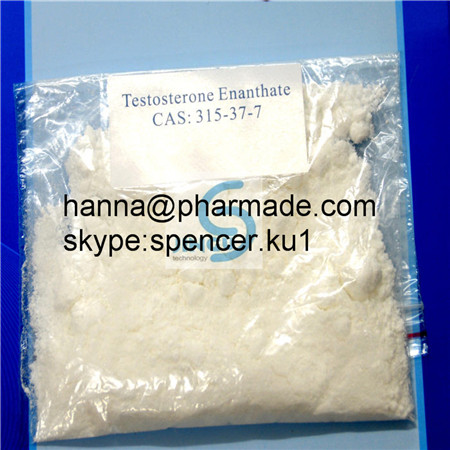 99.3% Testosterone Acetate Steroid powder