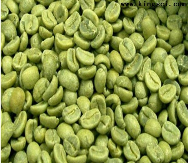 High Quality Green Coffee Bean Extract